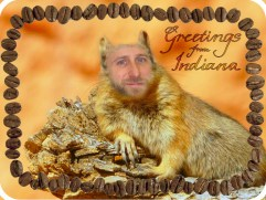 Greetings from Indiana 2012, Printed Postcard