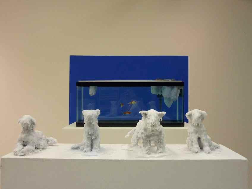 iceberg, dogs, husky, sled dogs, fish, bluescreen, wax, aluminium foil