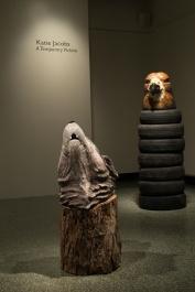 Wolf Head and Australia Head (Hawthorn Hawk)